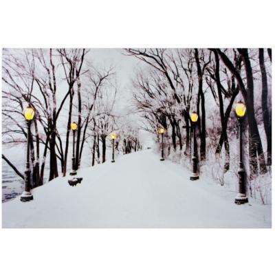 Világító falikép, havas utca, 6 LED-es